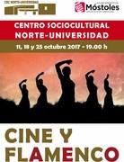 cine y flamenco