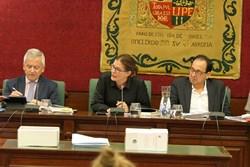 Pleno Fiestas 2 de mayo de interes nacional