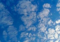 Vigilancia Ozono