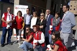 día de la banderita Cruz Roja 1